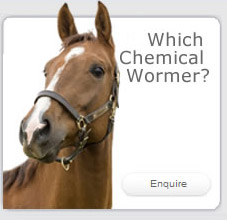 Which Chemical Wormer?